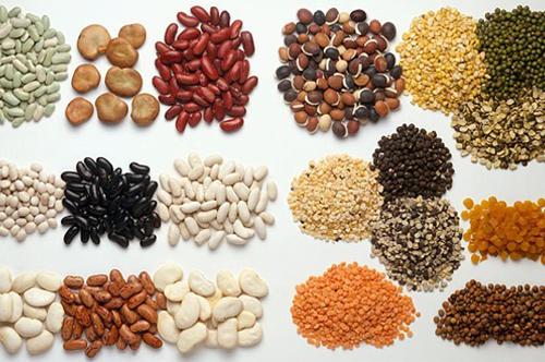 ¿Dónde Podemos Encontrar Las Proteínas Vegetales?